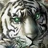Diablo 2 & LoD, ссылки на ВСЕ локализации ВСЕХ изданий - последнее сообщение от Raf-9600